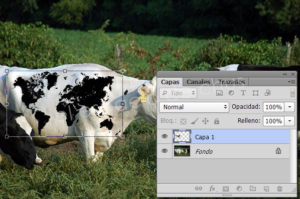 Mapa de desplazamiento con Photoshop - Arrastrar y adaptar