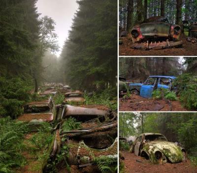 Cementerio de automóviles viejos, Bélgica - Créditos: Rosanne de Lange
