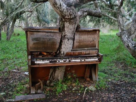Árbol con piano antiguo - Créditos: Crackoala