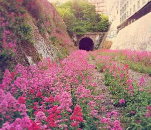 Via de ferrocaril abandonada, París - Créditos: messynessychic.com