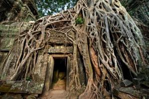 Angkor, Camboya - Créditos: Brad Grove