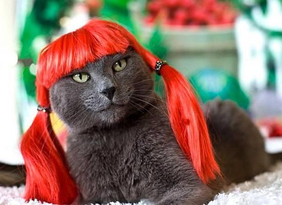 Maravillosa pelirroja desnuda / Wonderful naked redhead
