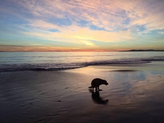 Precioso atardecer / Beautiful sunset