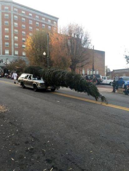 Llevando a casa el árbol de navidad / Bringing Home the Christmas tree