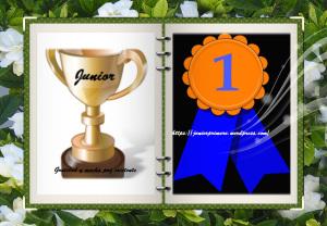 Premio Junior