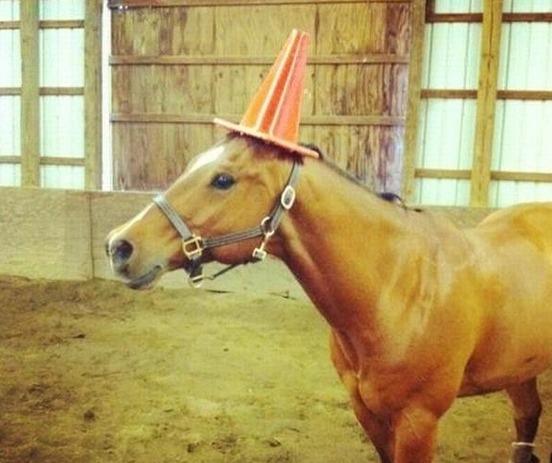 Algún día seré un unicornio / Someday I'll be a unicorn