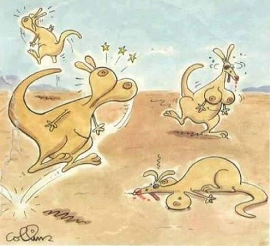 Si los canguros tuvieran tetas / If the kangaroos