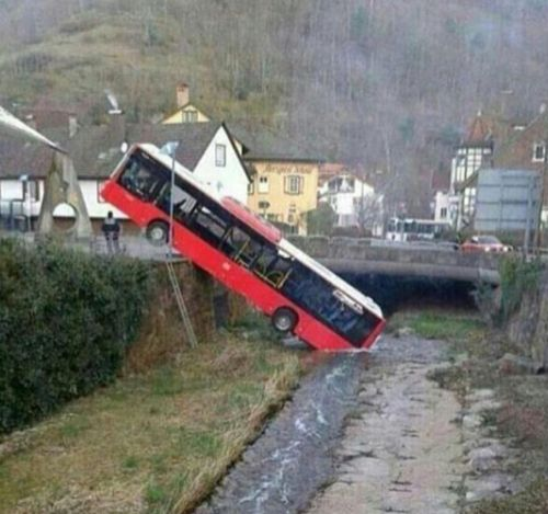 Y aquí podemos ver un autobús salvaje bebiendo agua de un río / And here we can see a wild bus drinking water from a river