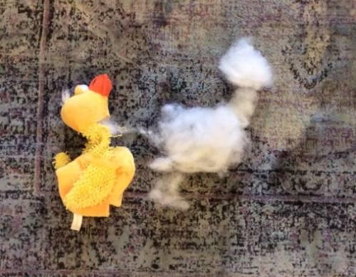 Increíble imagen del alma abandonando el cuerpo / Incredible picture of a soul leaving the body