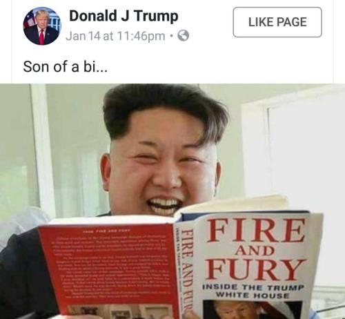 Fuego y Furia / Fire and Fury