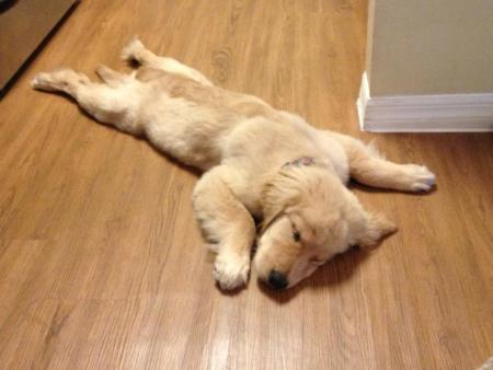 Los lunes son duros / Mondays are tough