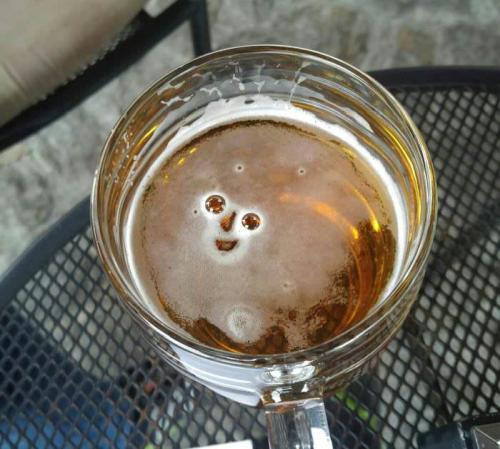 Al menos alguien está feliz de verme después de un largo día de trabajo / At least someone's happy to see me after a long day at work