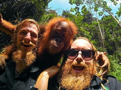 3 Pelirojos / 3 Gingers